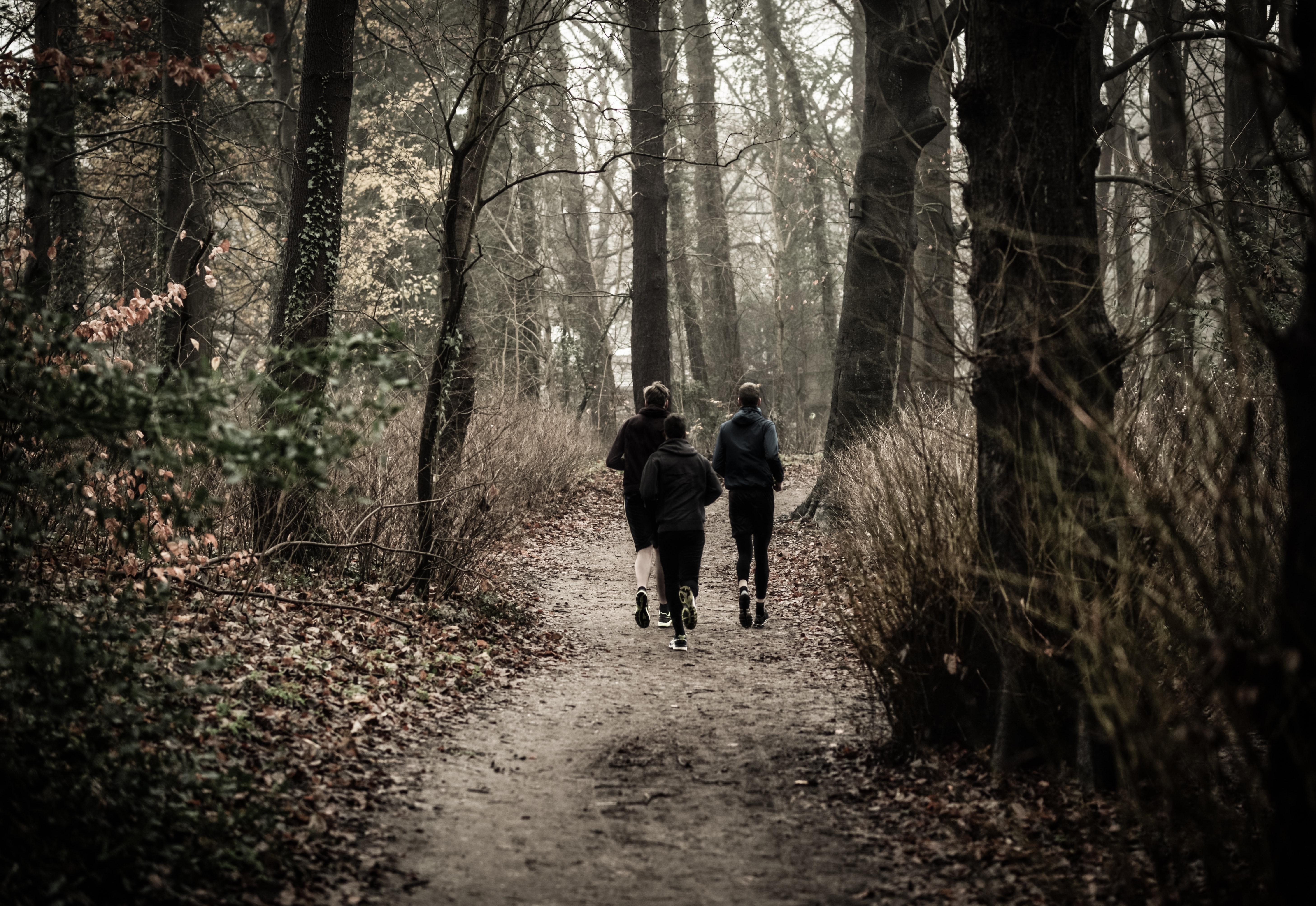 Ungdom løper i skogen